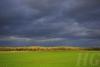 muensterland-_o4a7848