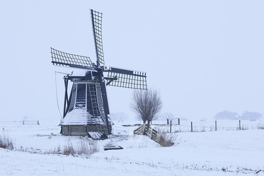 friesland-_mg_9310-h-glader