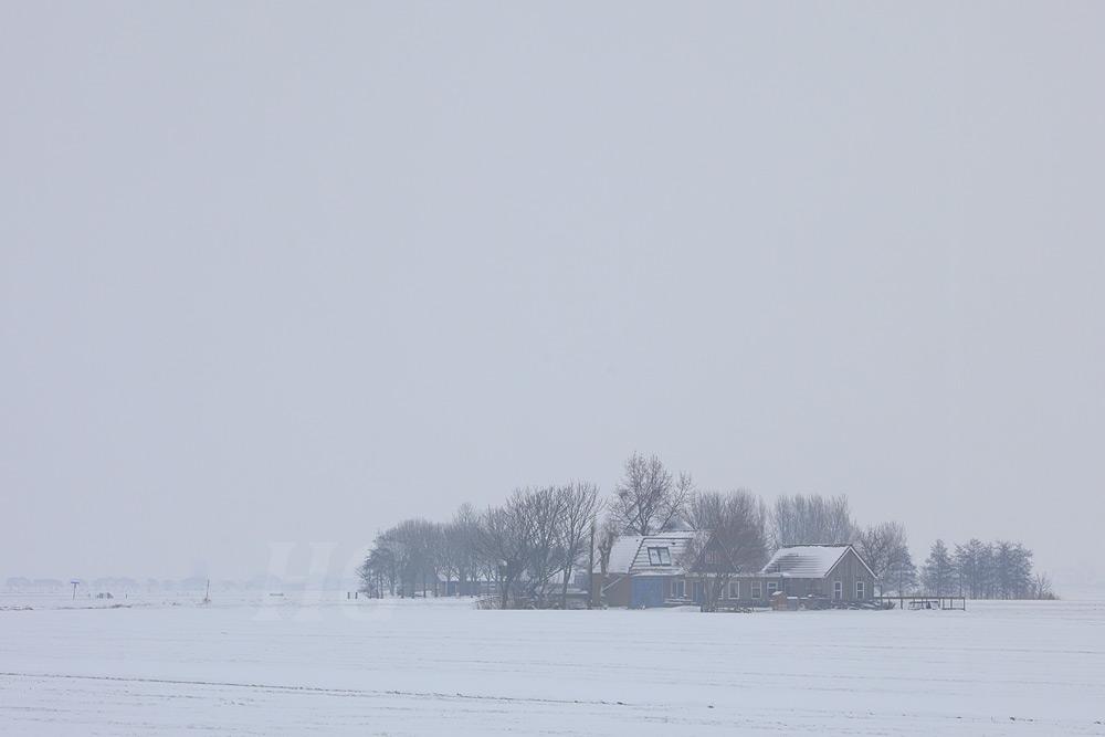 friesland-_mg_9326-h-glader