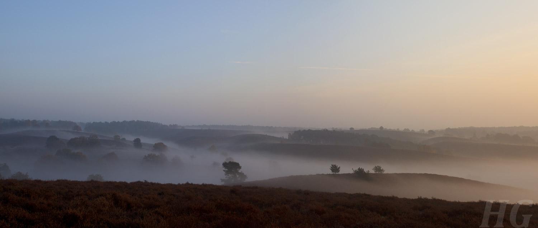 veluwe-niederlande-_panorama-h-glader